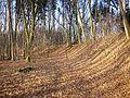 Burgstall Sand 2.jpg