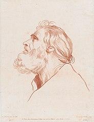 Bust Portrait of a Man with a Beard