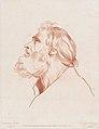 Bust Portrait of a Man with a Beard MET DP876447.jpg