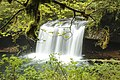 Butte Creek Waterfall, Oregon (31900065663).jpg