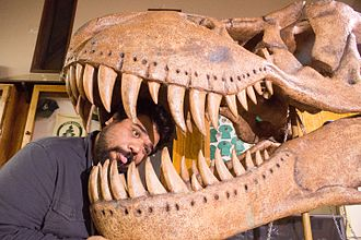 Camp Quest - Image: CQW Brian with Dinosaur
