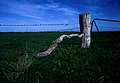 CSIRO ScienceImage 1556 Quaint farm gate.jpg