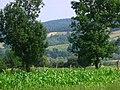 Cacica, Bucovina - panoramio - bajerskip (2).jpg