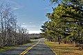 Camelback - panoramio.jpg