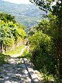 Caminho de Jacinto X (4824232226).jpg