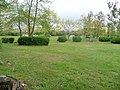 Campingplatz Alt Reddevitz Mai 14´ - panoramio.jpg