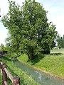 Canale di Secchia, Buco del Signore.jpg