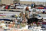 Canines remain 'man's best friend' in fight against terror DVIDS38316.jpg