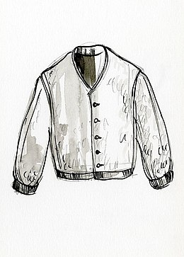 Cardigan (clothing).jpg
