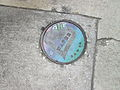 Carrollton Jul2015 Oak Sidewalk Meter Love.jpg