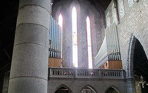 St Mary's Cathedral, Killarney - Image: Cathedral organ of killarney by paride