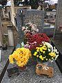 Cemetery of Saint-André-de-Corcy - november 2016 (16).JPG