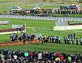 Champion Hurdle (13179141823).jpg