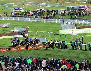 Cheltenham Festival Horse racing festival