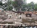 Chandigarh Rock Garden 36.jpg