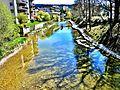 Chemin-promenade sur la berge du Doubs.jpg