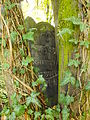 Chenstochov ------- Jewish Cemetery of Czestochowa ------- 33.JPG