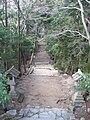 Chihaya Castle07.jpg