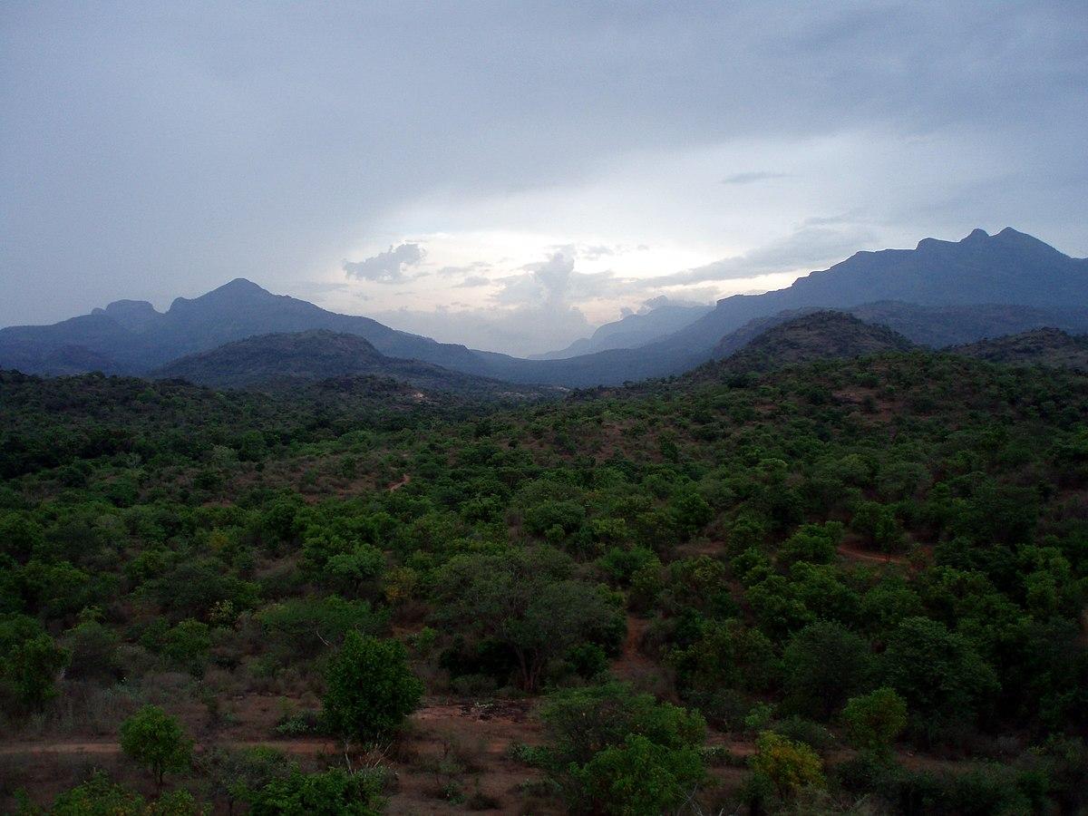 Anaimalai Hills - Wikipedia