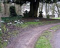 Churchyard, All Saints - geograph.org.uk - 1729729.jpg
