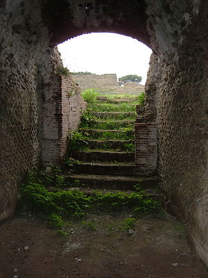 Flavian Amphitheater (Pozzuoli) - Entrance to arena from below.