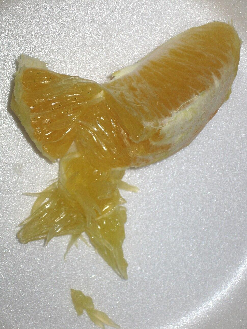 Citrus pulp1