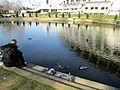 City Park in Skopje 92.JPG
