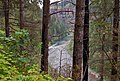 Clackamas Wild and Scenic River (27727585360).jpg