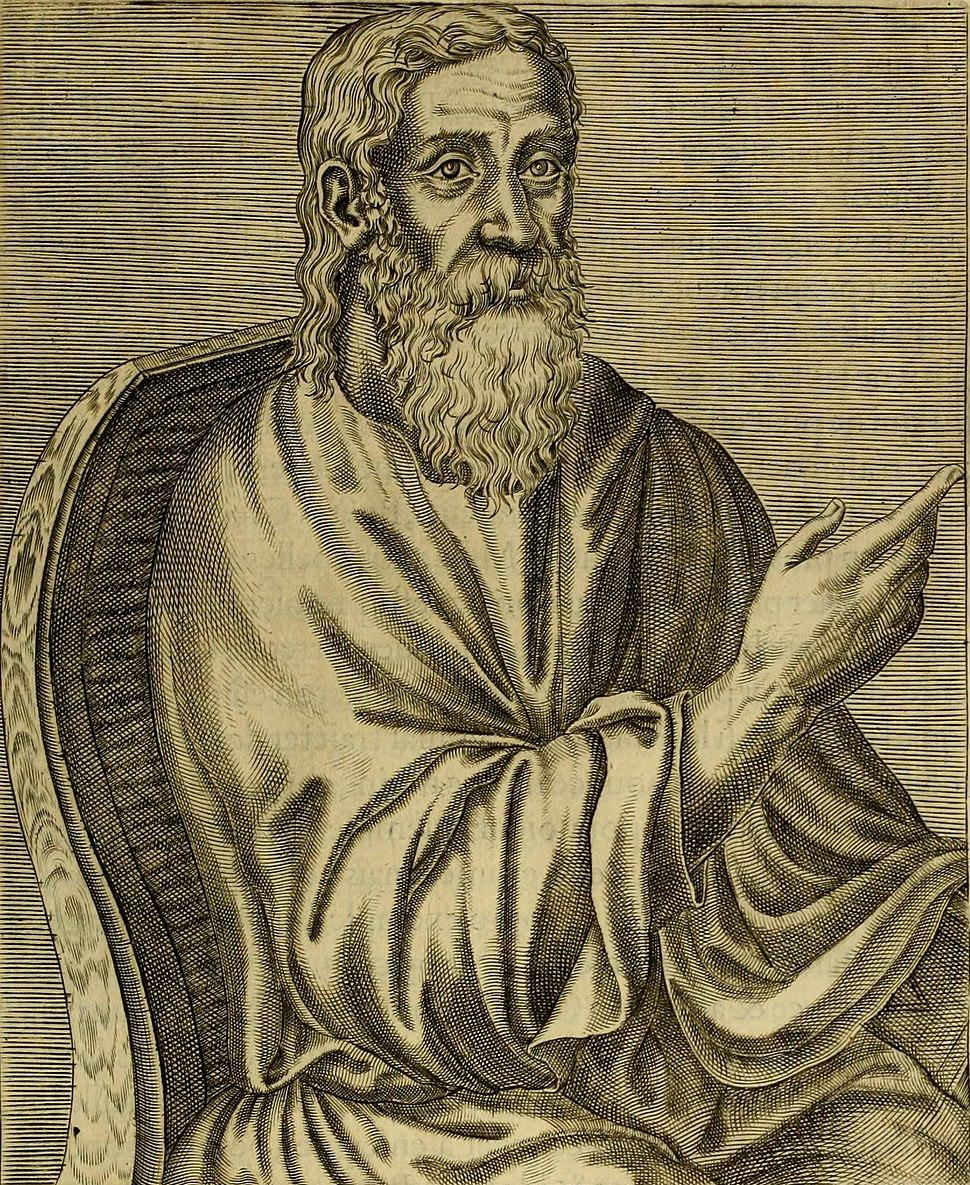 Clement alexandrin