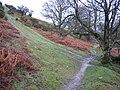 Clwydian Way-Taith Clwyd - geograph.org.uk - 310154.jpg
