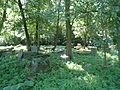 Cmentarz ewangelicki w Końskowoli 01.JPG