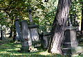 Cmentarz rzymsko-katolicki tzw. stary w Krośnie, ul. Krakowska 1 hanica102.JPG