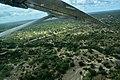 Coastal Aviation flying over Selous Game Reserve (11) (28755398260).jpg