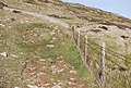 Coastal path - geograph.org.uk - 766226.jpg