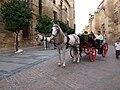 Coche de caballos (Córdoba, España).jpg