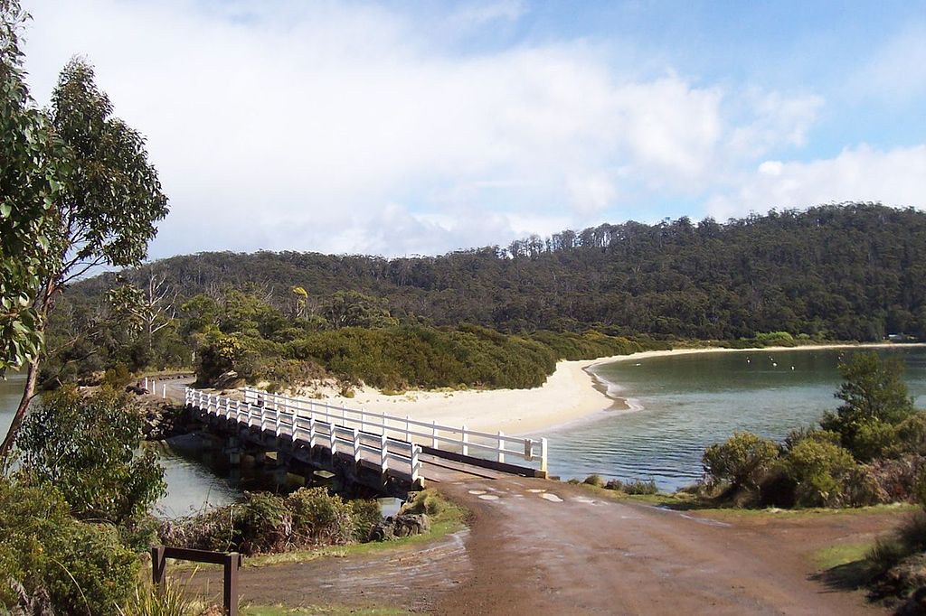 Cockle-creek