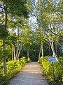 Collingwood Trails, Canada, June 2014 (14365169453).jpg