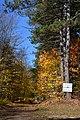 Colton, NY, USA - panoramio (1).jpg