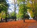 Como autunno ottobre 2017 019.jpg