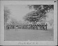 "Company A, National Guard of Hawaii, ""Parade Rest"" (PP-53-6-016).jpg"