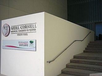 Weill Cornell Medical College in Qatar - Image: Cornell qatar stairway
