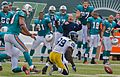 Cotchery drops ball, Dolphins excited Jets-Dolphin game, Nov 2009 - 133.jpg