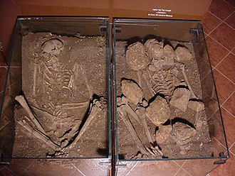 Ain Mallaha - Skeletons discovered at Eynan