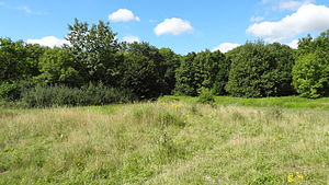 Covert Way - Pasture area in Covert Way