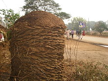 Cow dung - Wikipedia