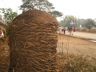 Cow dung - Mound of cow dung fuel, India