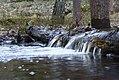 Creek Nackareservatet.jpg