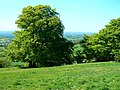 Crickley Hill Country Park (18) - geograph.org.uk - 1300317.jpg