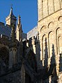 Crockets on Exeter Cathedral - geograph.org.uk - 252450.jpg