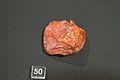 Crude Amber, 950-1120 AD, Olomouc, ArchbM Olomouc, 152087.jpg
